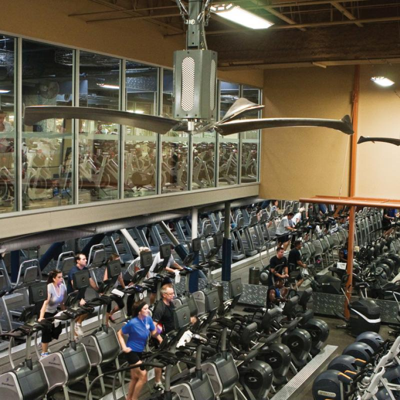 Aerial shot of Rave Fan in use at a fitness center